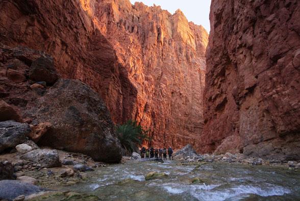Группа в каньоне Иордании