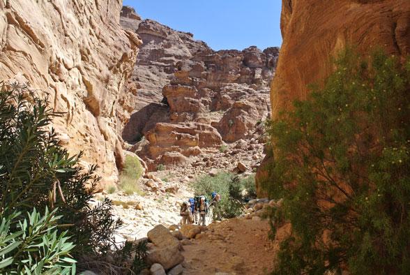 Сухие каньоны Иордании
