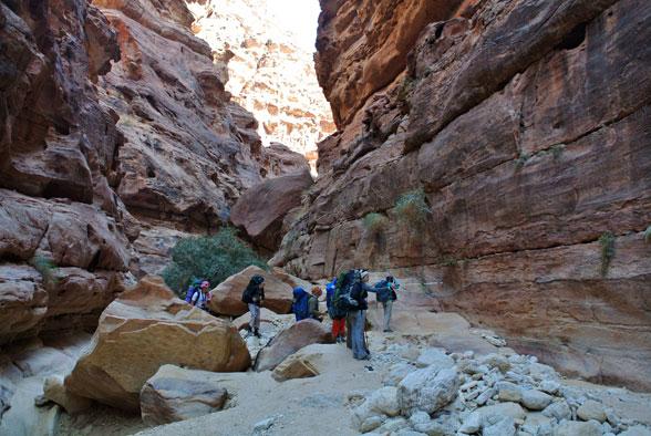Петроглифы на стенах каньона, Иордания