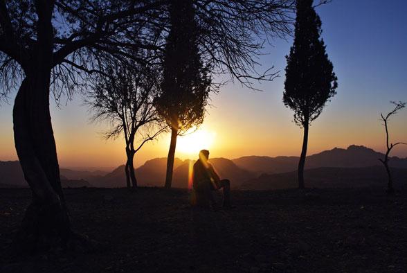 Сад с деревьями. Поход в Иорданию